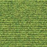 Broadrib - Willow